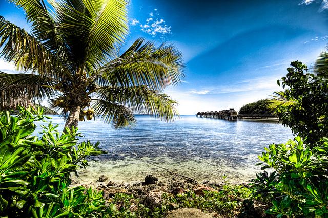 Какой остров Тихого океана выбрать?