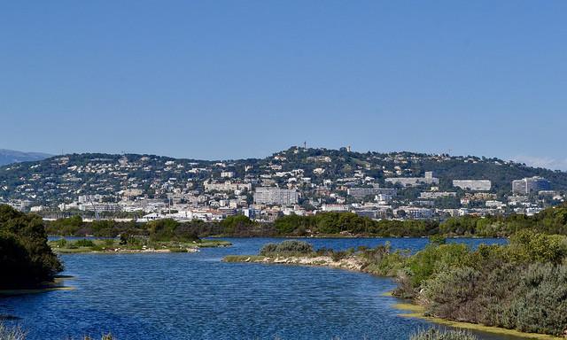 Вид на Канны с соседнего острова