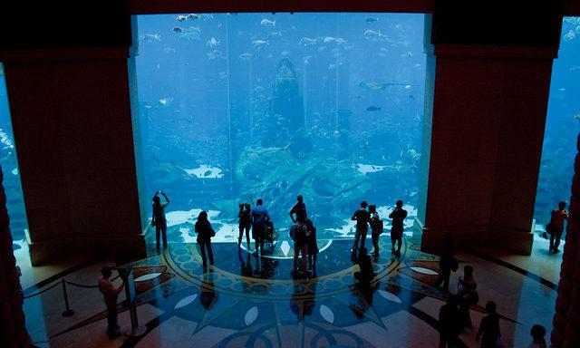 Океанариум The Lost Chambers в отеле Атлантис