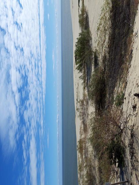 Высота Эфа, вид на Куршский залив