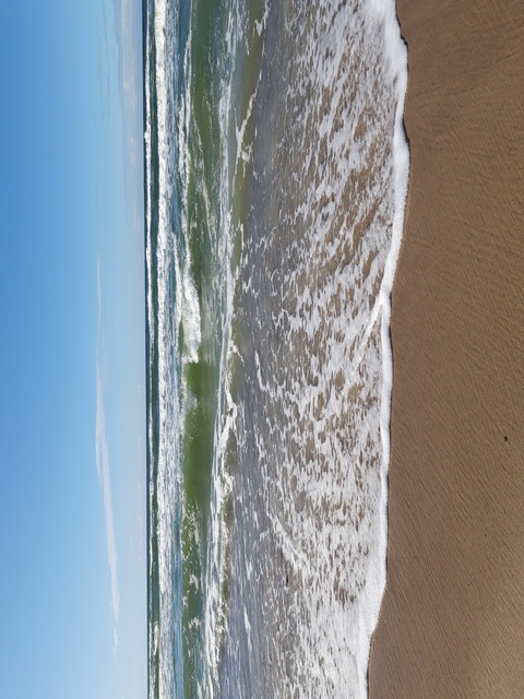 Берег Балтийского моря на Куршской косе